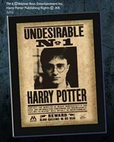 Imagen de Undesirable N°1 Harry Potter