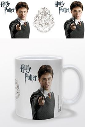 Imagen de Harry Potter Taza Harry Potter Retrato