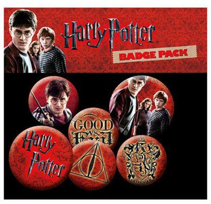 Imagen de Harry Potter Pack 6 Chapas Icons