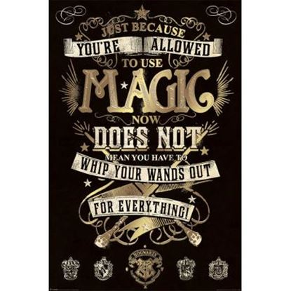 Imagen de Harry Potter Poster Magic