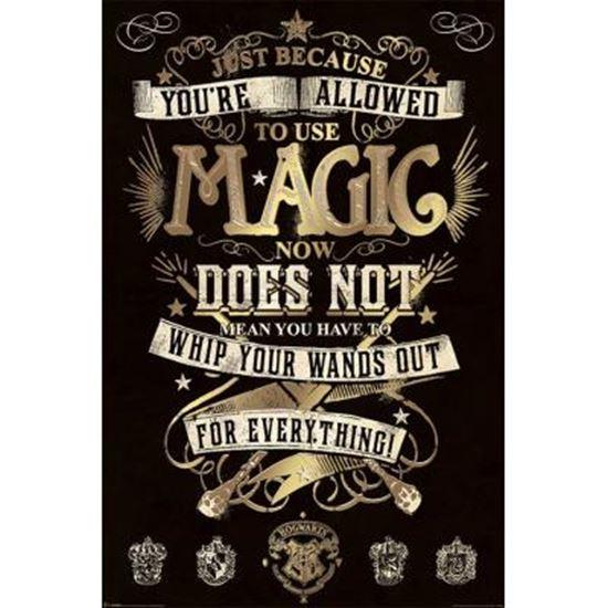 Foto de Harry Potter Poster Magic