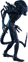 Foto de Aliens Figura Movie Masterpiece 1/6 Alien Warrior 35 cm