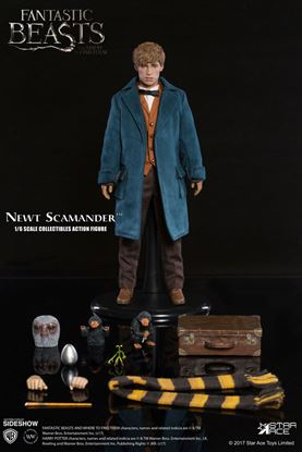 Imagen de Animales Fantasticos y Donde Encontrarlos My Favourite Movie Figura 1/6 Newt Scamander 30 cm