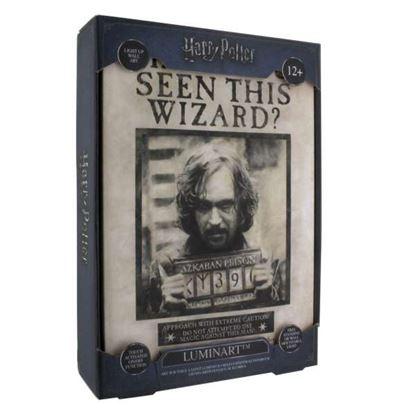 Imagen de Cuadro con Luz Sirius Black - Harry Potter