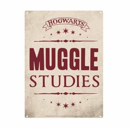 Imagen de Harry Potter Plancha Pequeña Muggle Studies
