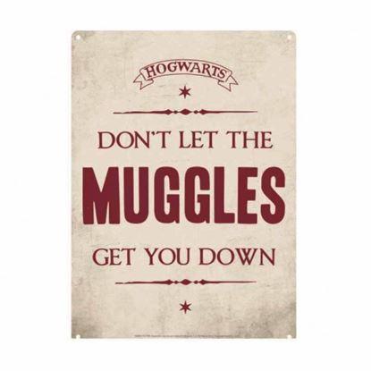Imagen de Harry Potter Plancha Pequeña Don't Let the Muggles