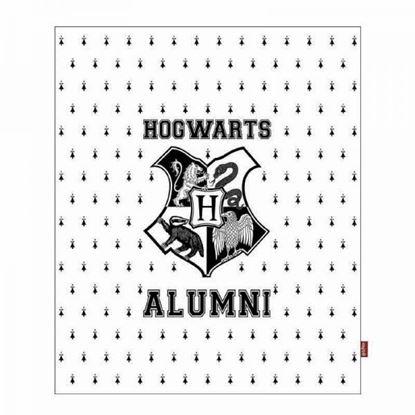 Imagen de Manta Hogwarts Alumni 125 x 150 cm - Harry Potter
