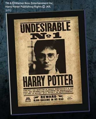Picture of Undesirable N°1 Harry Potter