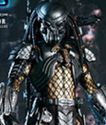 Picture of Alien vs. Predator Figura Celtic Predator