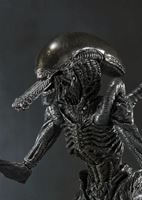 Picture of Alien Warrior Figura  Alien VS Predator S.H.MonsterArts