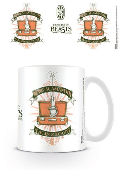 Picture of TAZA HP FANTASTIC BEASTS MAGICAL CASE