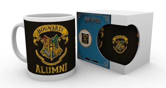 Picture of Harry Potter Taza Alumni