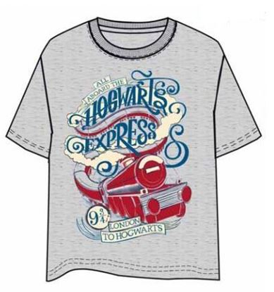 Picture of CAMISETA HARRY POTTER HOGWARTS EXPRESS. TALLA XL