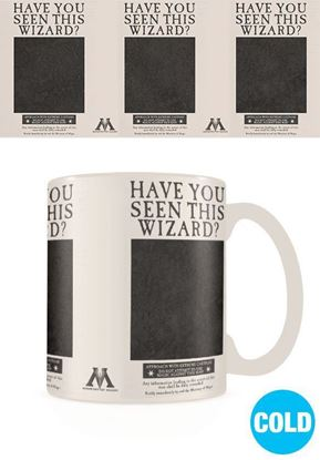 Picture of Taza Térmica Sirius Black - Harry Potter