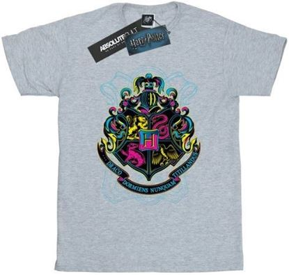 Picture of Camiseta Unisex Hogwarts Neón Gris Talla L - Harry Potter - DISPONIBLE APROX: SEPTIEMBRE 2019