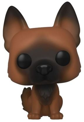 Picture of Walking Dead POP! Television Vinyl Figura Dog 9 cm
