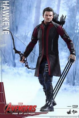 Picture of Hot Toys Hawk Eye Age of Ultron