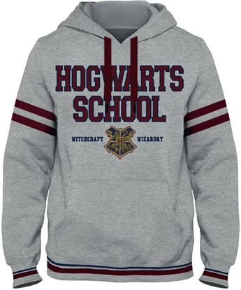 Picture of Sudadera Adulto Hogwarts School Talla S - Harry Potter