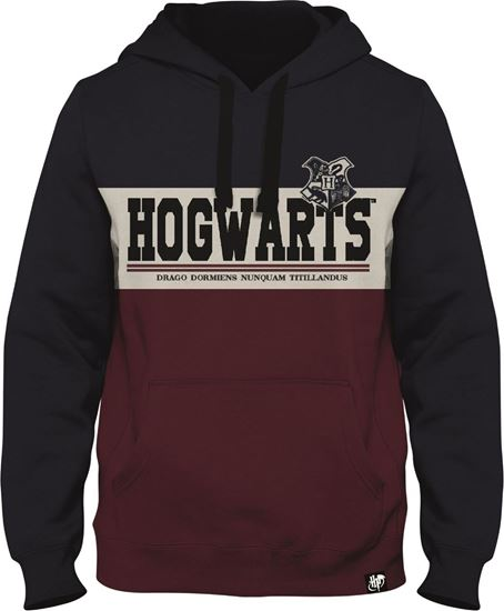 Picture of Sudadera Adulto Hogwarts Talla L - Harry Potter