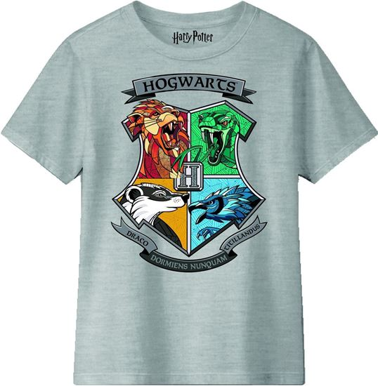 Picture of Camiseta Hogwarts Niño Talla 8 años - Harry Potter
